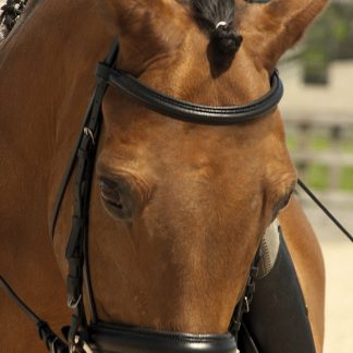 Rhinegold German 'Comfort' Bridle With Flash Noseband