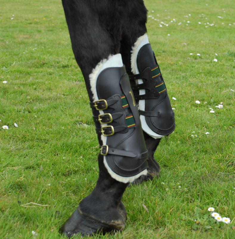 Rhinegold German Leather Tendon Boots - Black