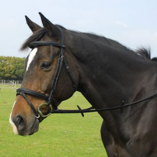 Heritage English Leather Bridle With Flash Noseband
