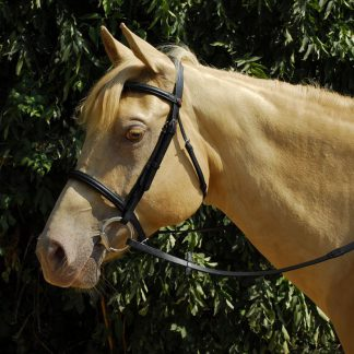 Windsor Leather Bridle with Cavesson Nosebamd