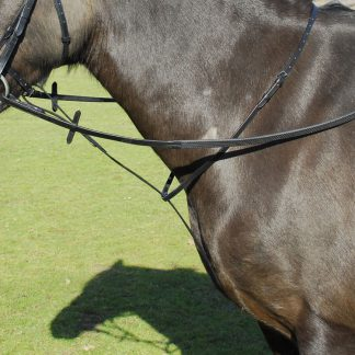 Windsor Equestrain Leather Standing Martingale