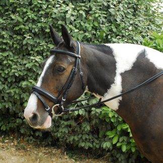 Windsor Leather 'comfort' Bridle With Crank Style Flash Noseband