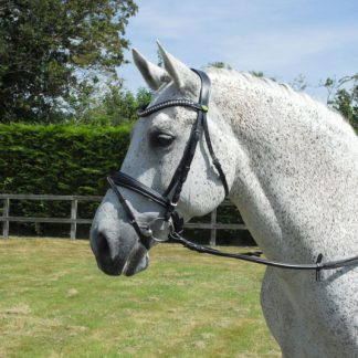 Rhinegold Italian Leather Anatomical Bridle With Flash Noseband