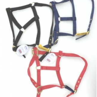 Spare Strap for Eclipse Release Headcollar