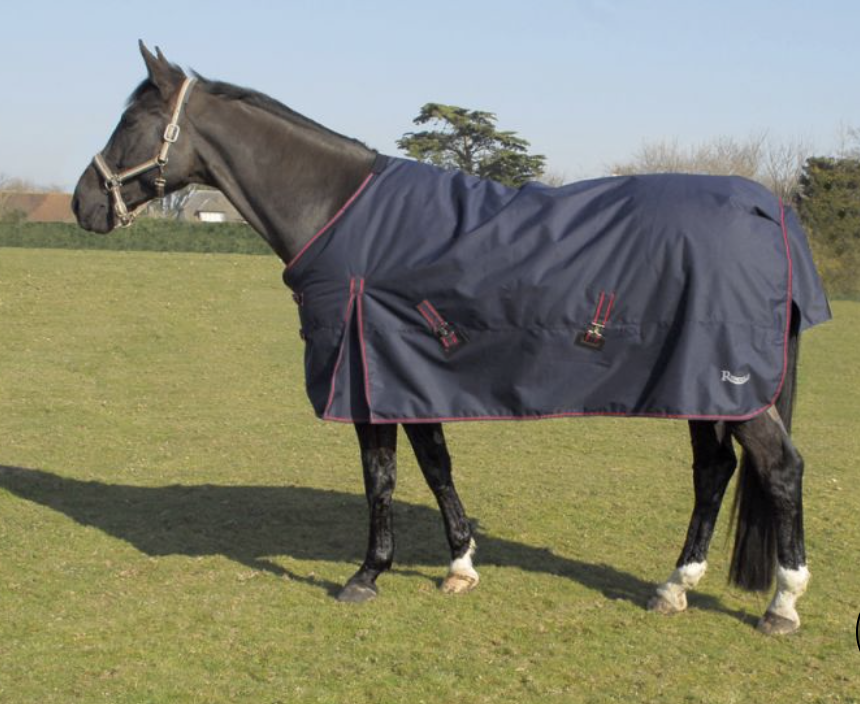 Rhinegold Thor Outdoor Rug - Navy & Red
