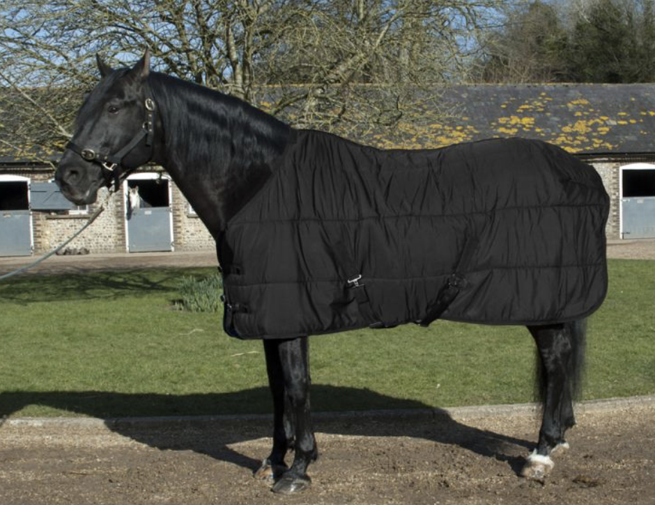 Classic 200g Fill Middleweight Stable Quilt