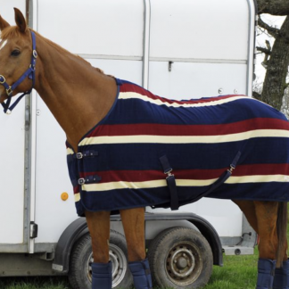 Rhinegold 'Elite' Fleece Rug