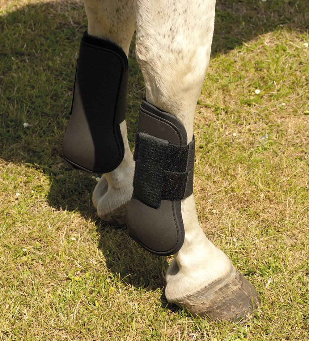 Harlequin Neopreme Tendon Boots