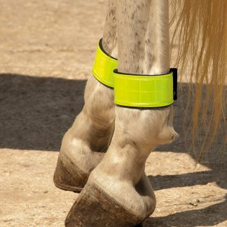 Harlequin Neopreme Lined Reflective Leg Bands