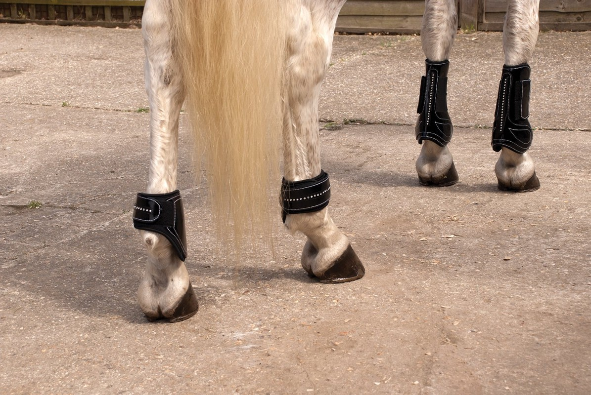 Rhinegold Patent Tendon And Fetlock Boot Set With Crystals